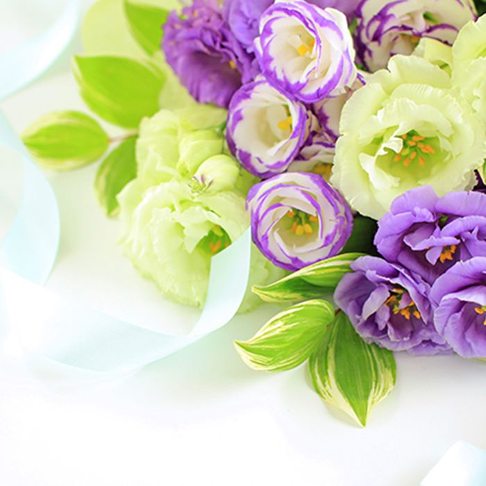 様々な色味の花
